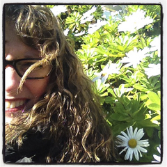 Thankful for the Wind and Shasta Daisies.